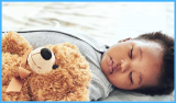 Best Stuffed Animal for Baby to Sleep With